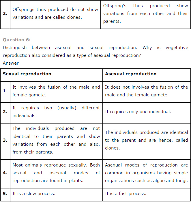 Difference between sexual and asexual spores